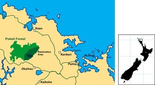 Puketi Forest Trust location map