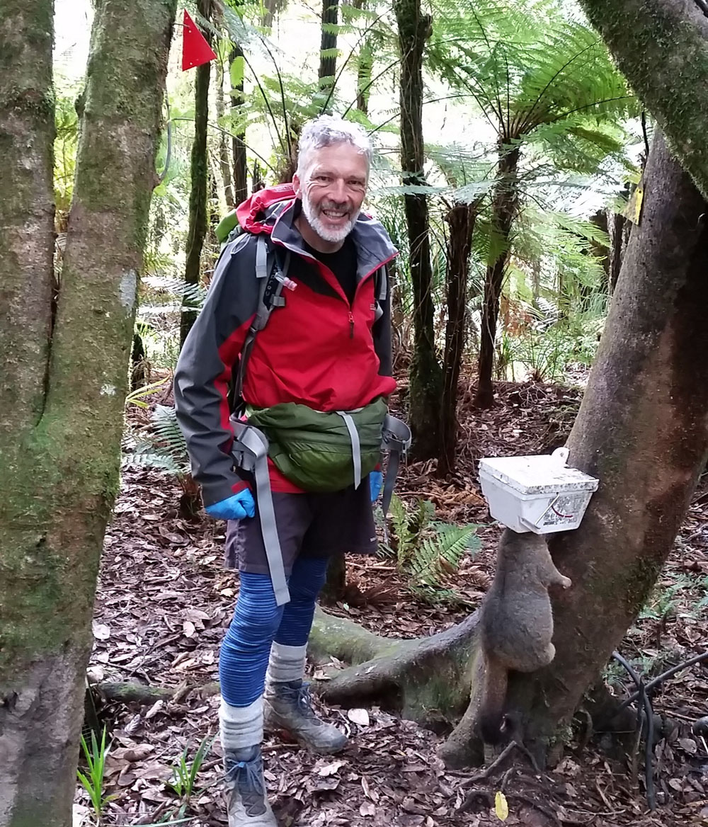 Volunteer trapper in Puketi Forest with possum in Trapinator